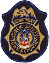 Department of Public Safety Patch