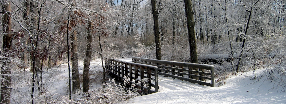 Trail Bridge in Longview Farm Park